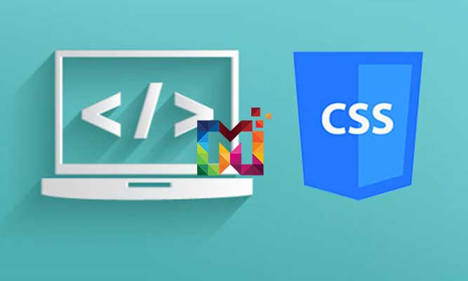 CSS-İle-Temel-Düzey-Etiket-Biçimlendirme