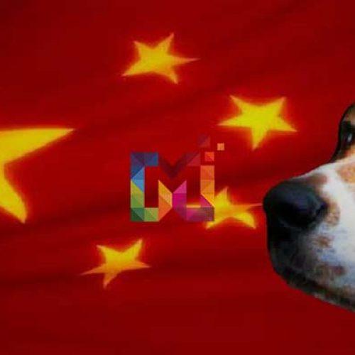Yulin Vahşeti Neden Durdurulamıyor? Yulin Vahşetine Dur Deme Vakti!